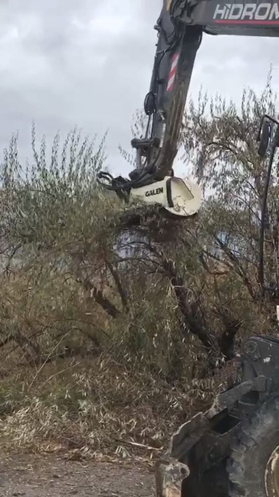 Tree Removal/Trimming Attachments