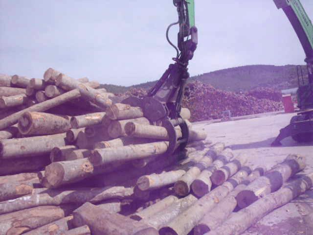 Timber Grapple